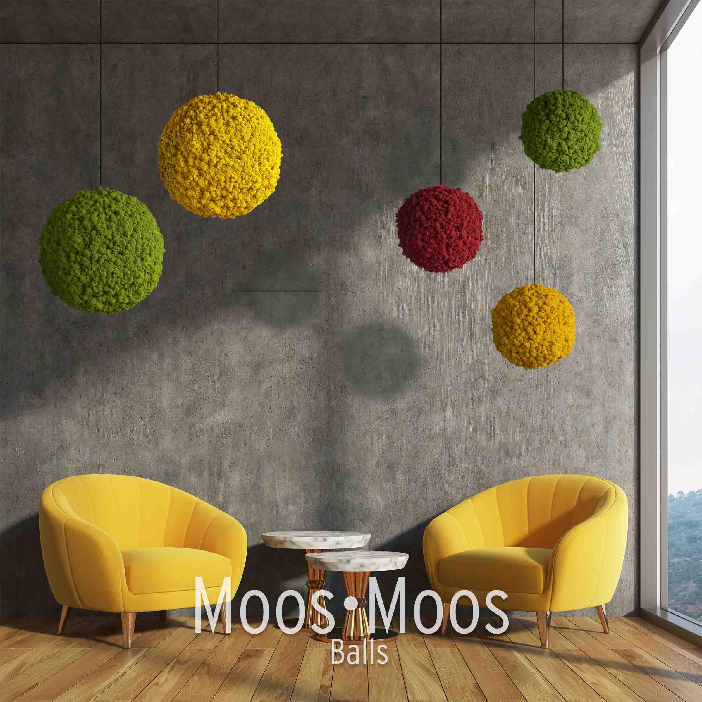 Moos Balls aus Islandmoos