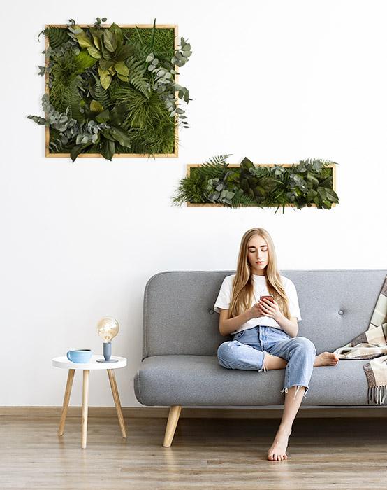 Moosbilder Pflanzenbilder
