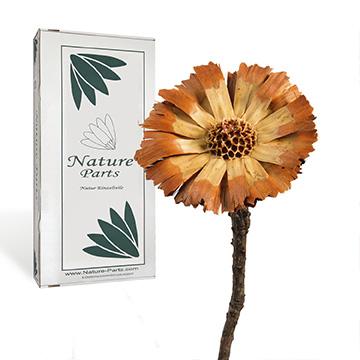 NatureParts® Boxenvielfalt Sortenrein
