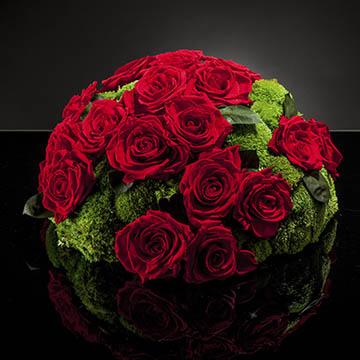 präparierte Pflanzen & Kunstblumen