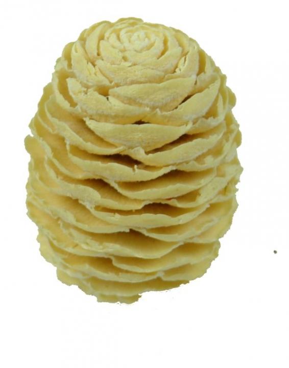 Sabulosum Zapfen Ø 4-5cm Gebleicht (13 Kg)