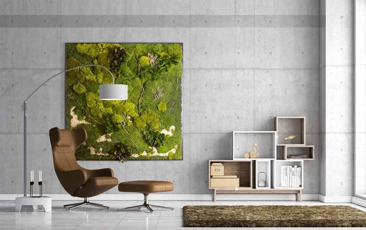 Moosbild ´Plateau mit versch. Moosen´ 200 x 200 cm Pflanzen & Moos Mix auf Holzfaserplatte anthrazit