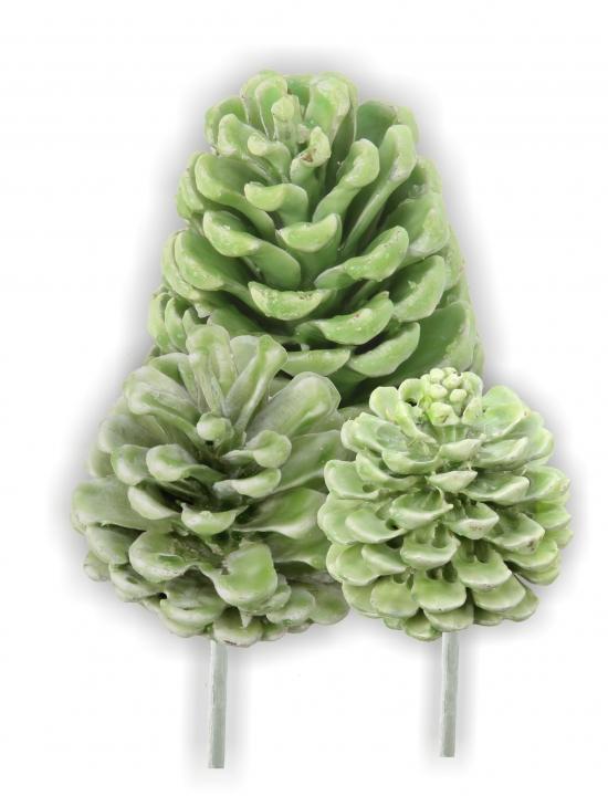Sortiment Zapfen am Stab gewachst grün light (50tlg.)