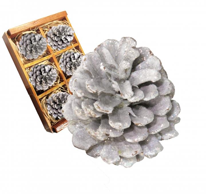 Weihnachtszapfen gewachst in Weiß / Silber Glitter ( Holzbox - 6 Stück)