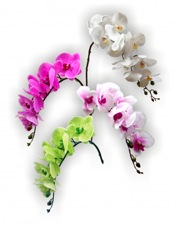 Orchidee 4fach