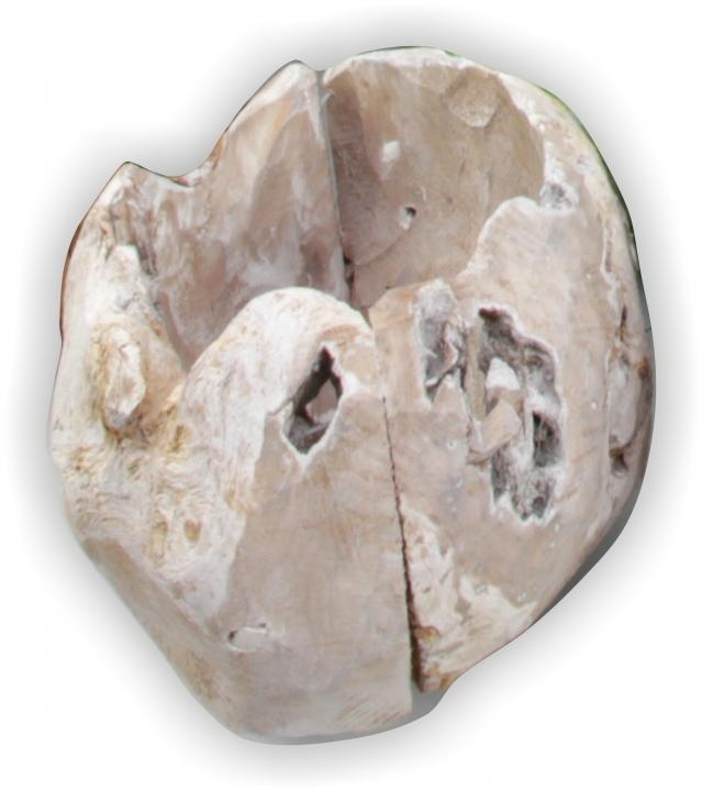 Wurzelholz Topf in Stonewashed ( ca. Ø 25cm )