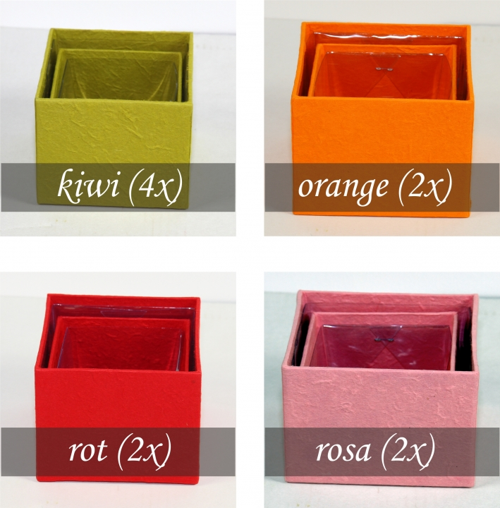 Blumen Boxx 20er Set Farbe [10x10x10x12cm + 10x 8x8x10cm]