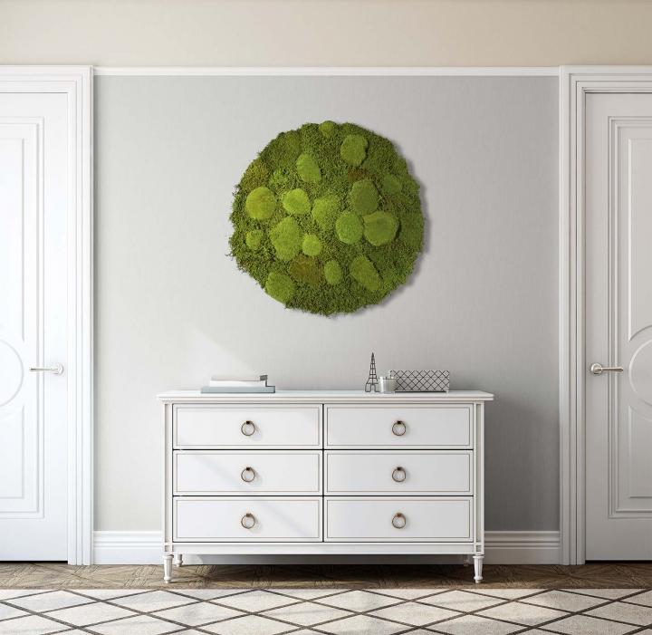 Moos•Moos Organic Rundbild aus `Ballenmoos und Grünmoos´ präpariert in Apfelgrün mit Edelstahlrahmen ( Ø 70cm )