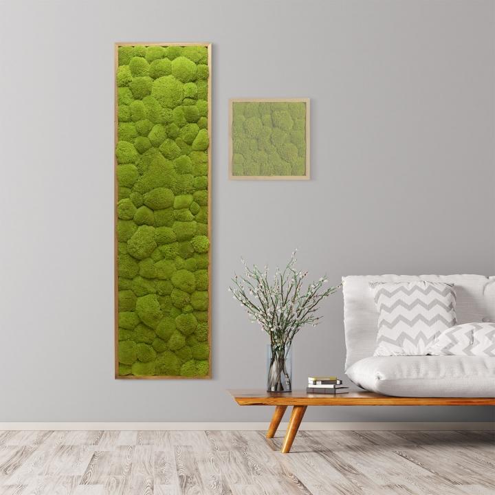Moosbild Kugelmoos 140 x 40 cm mit Tischlerrahmen aus geölter Eiche