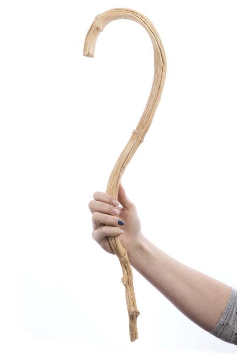 Banana Stick in Gebleicht ( ca. 60-80cm ) (60 Stück)