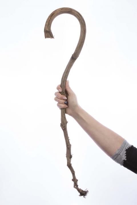 Banana Stick in Natur ( ca. 60-80cm ) (60 Stück)