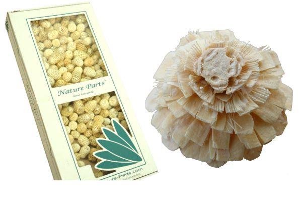 Rosenzapfen Gebleicht ( 1 kg )