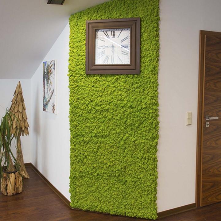 Moos•Moos Islandmoos Organic Moosbild ´Amalia´ in Wurzelbraun – Moosplatte ( 25 x 25cm ) – einzigartiges Gefühl trifft auf besonderes haptisches Gefühl