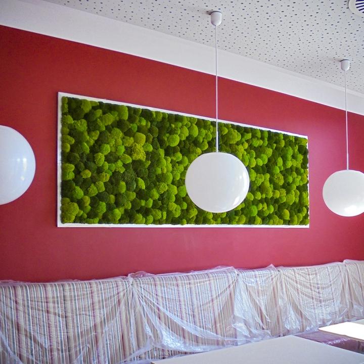 Moos•Moos lichtechte Farbe inklusive Präparation in Apfelgrün