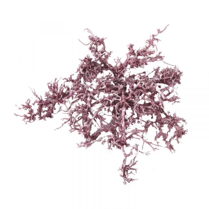 Sortiment Einzelteile in Frosted Pink Erika ( 60 teilig )