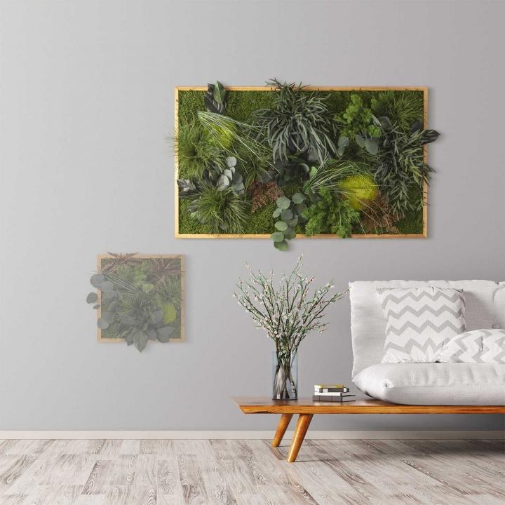 Moosbild ´Dschungel´ 100 x 60 cm mit Rahmen aus geölter Eiche
