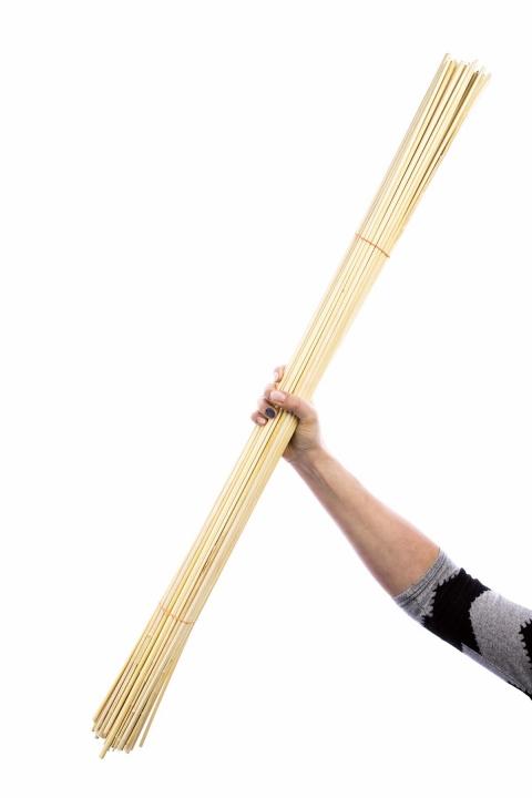 Golden Stick / Pflanzenstab in Gebleicht ( ca. 1m )
