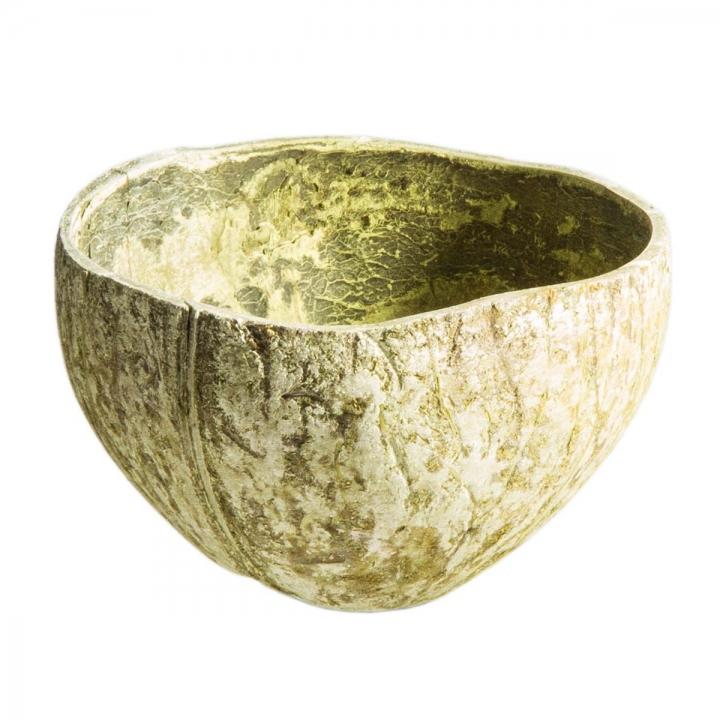 Sortiment Galera Blatt & Kokosschalen in Springfarbe ( 15 Stück )