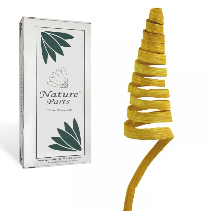 Cane Cone Mini in Gelb ( 150 Stück )
