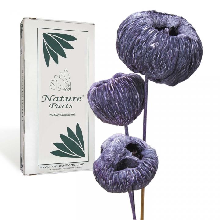 Talami am Stiel in Frosted Purple ( 30 Stück )