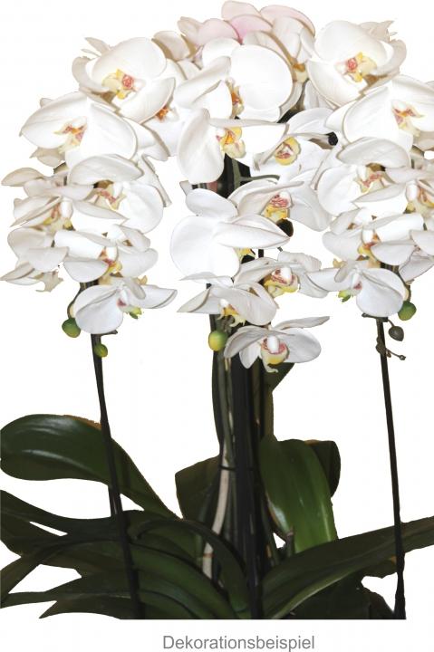Orchideen Zweig gummiert in weiß / lila Länge 65cm       (12 St