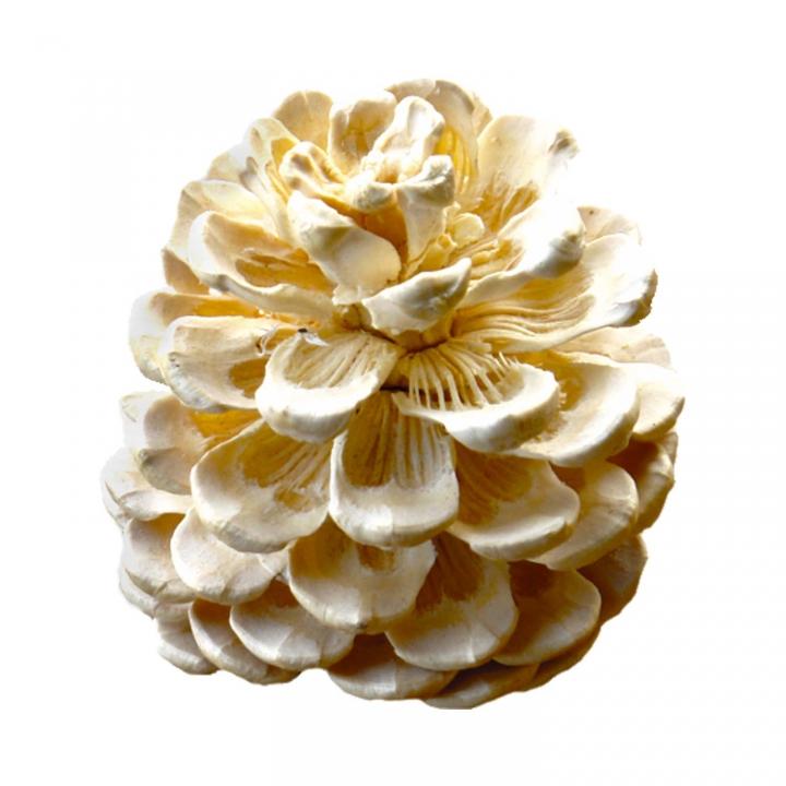 Pinea Zapfen Mittel Gebleicht ( 15 Stück )