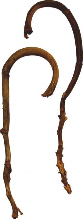 Banana Stick in Natur ( ca. 60 - 80cm )