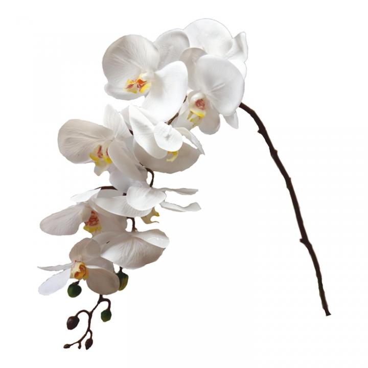 Orchideen Zweig gummiert in weiß ( ca. 65cm )