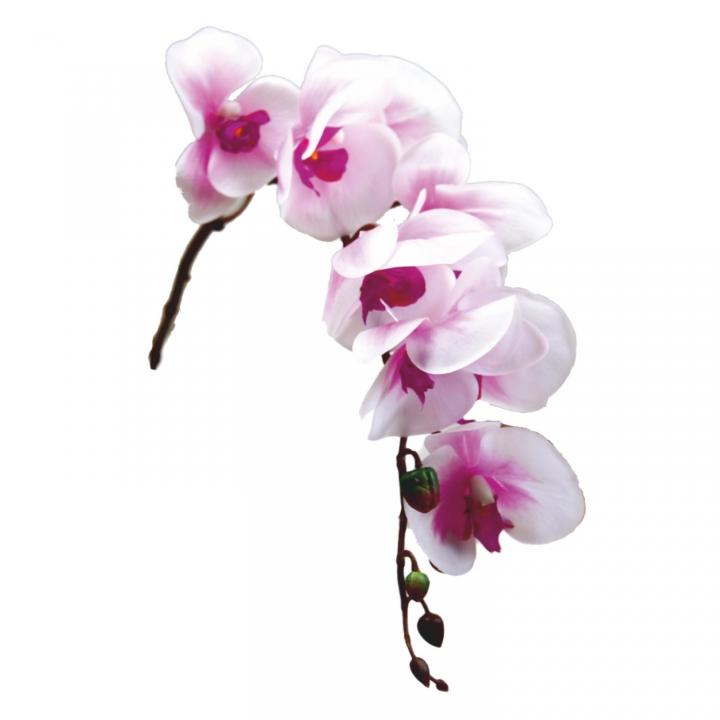 Orchideen Zweig gummiert in weiß / lila ( ca. 65cm )