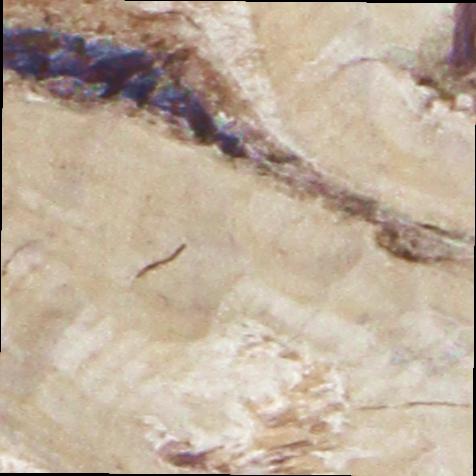 Wurzelholz Topf mit Henkel in Stonewashed ( ca. 30cm hoch / Ø 20cm )