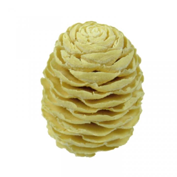Sabulosum Zapfen Gebleicht ( Ø 4-5cm ) (13 Kg)