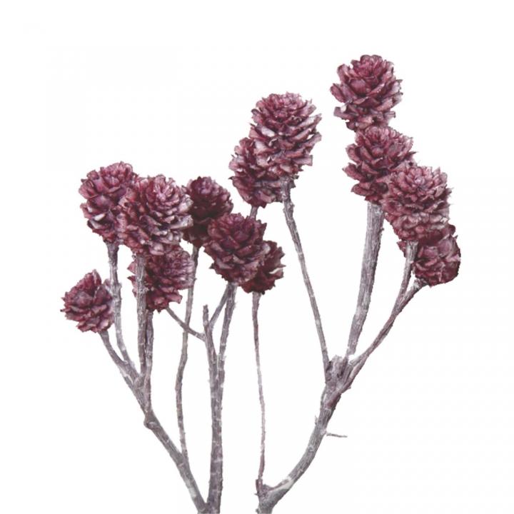 Salignum Zweig Extra in Frosted Pink Erika (200 Stück)