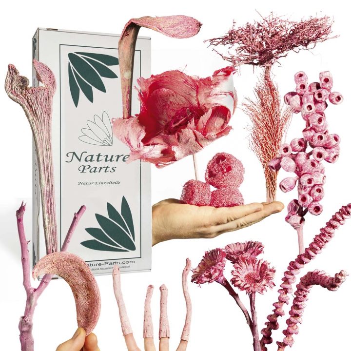 Sortiment Einzelteile in Flamingospring ( 56 teilig )