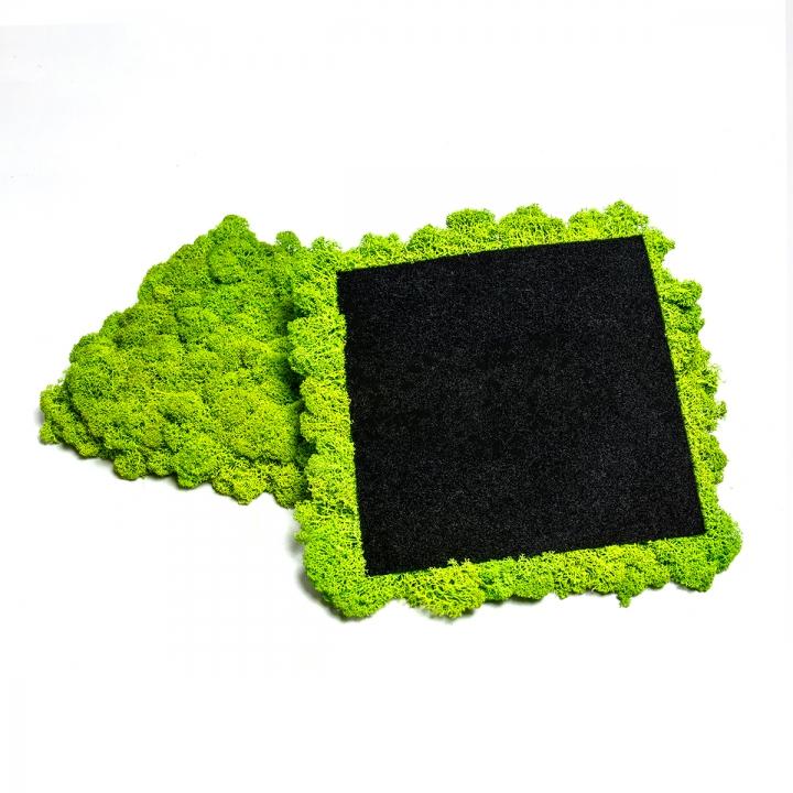 Moos•Moos Islandmoos Organic Moosbild ´Amalia´ (25x25cm) in Königsblau – Moosplatte – einzigartiges Gefühl trifft auf besonderes haptisches Gefühl