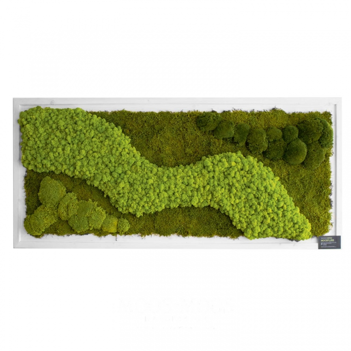 Moos•Moos Organic Moosbild ´INDIVIDUAL´ aus präpar. Moosen mit Holzrahmen ( 182 x 82,5cm )