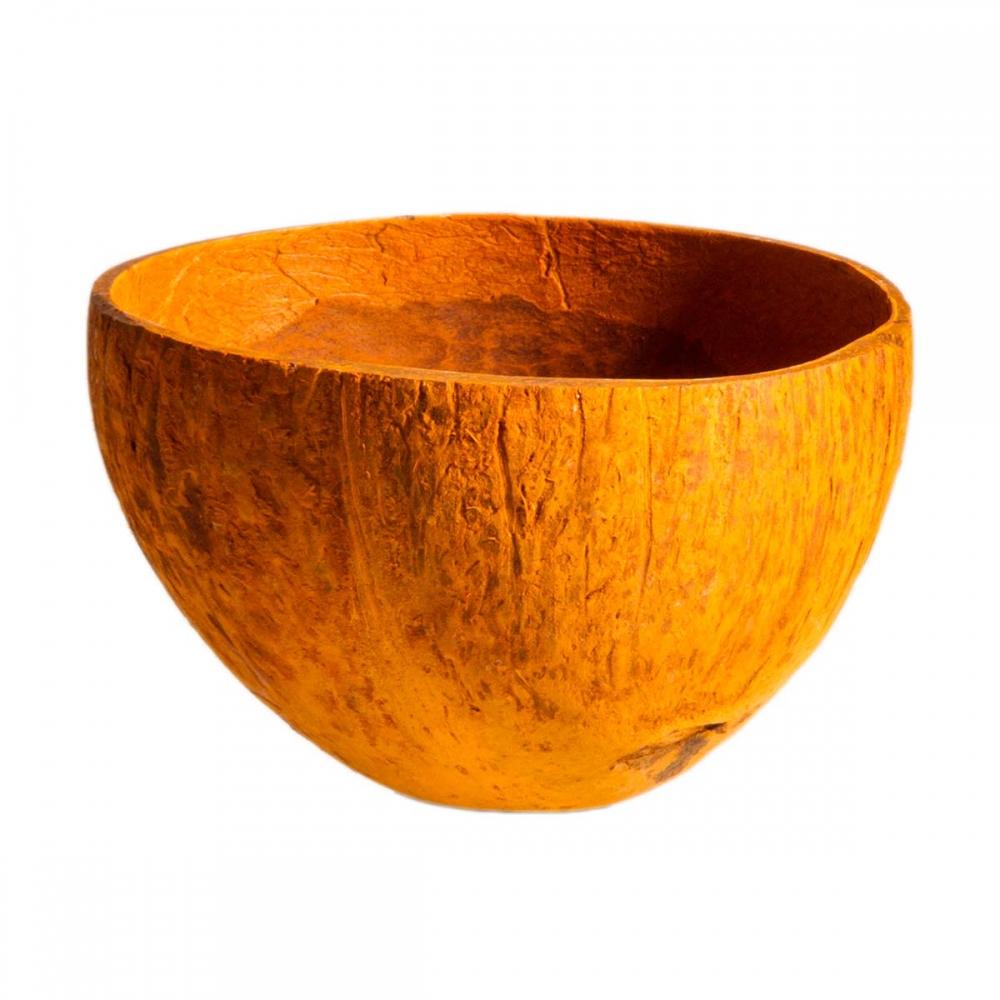 Cocosbecher Schale Nuss In Orange Farbe Mit Glatter Oberfläche Ca