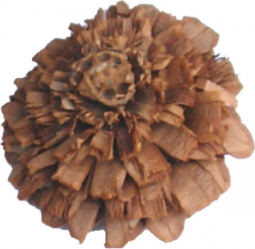 Rosenzapfen Natur (10 Kg)