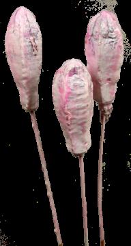 Mehogany am Stiel gewachst in Viola Ice (500 Stück)