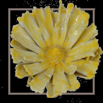 African Sun gewachst gelb (100 Stück)