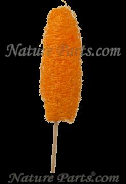 Luffa am Stiel orange (250 Stück)