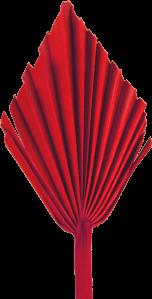 Palm Spear mit  Stiel medium in Rot  (50 Stück)