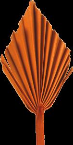 Palm Spear mit  Stiel medium in Orange (50 Stück)