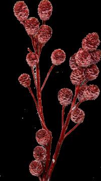 Strictum gewachst rot antik (200 Stück)