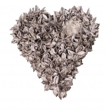 Baumwollfrucht Herz gewachst in Mocca Grey ( Ø 25cm ) (6 Stück)