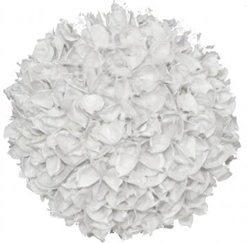 Baumwollfrucht Kugel Ø 18cm gewachst in Creme Weiß