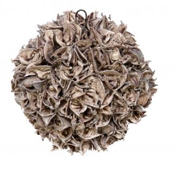 Baumwollfruchtkugel 22cm gewachst mocca grey