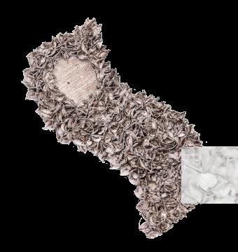 Baumwollfrucht Schweif gewachst in Creme Weiß ( ca. 40cm ) (6 Stück)