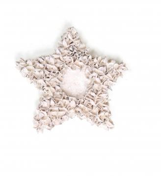 Baumwollfrucht Stern gewachst in Weiß Glitter ( ca. 30cm ) (4 Stück)
