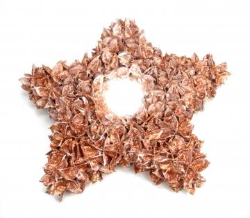Baumwollfrucht Stern gewachst in Kupfer Glitter ( ca. 30cm ) (4 Stück)