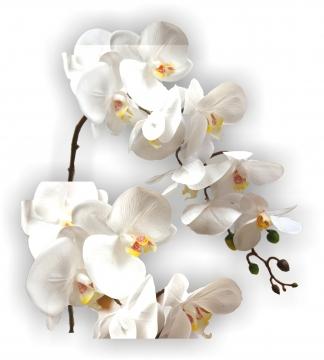 Orchideen Zweig gummiert in weiß Länge 65cm       (12 Stück)